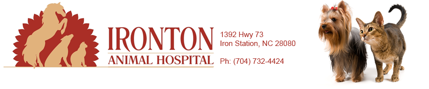 Ironton Animal Hospital located in Iron Station, NC.